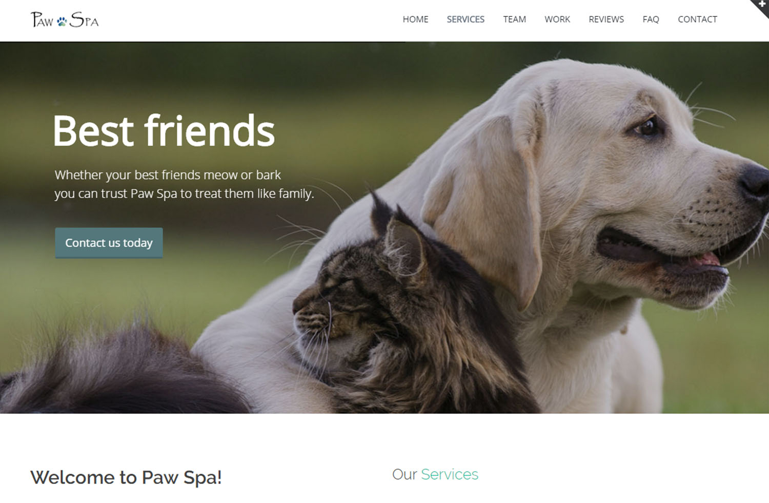 Paw Spa Website